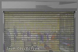 שערים חשמליים - רוטנשטיין חוסם